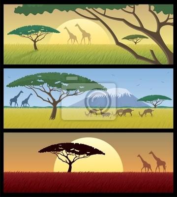 Obraz Afryka Krajobrazy