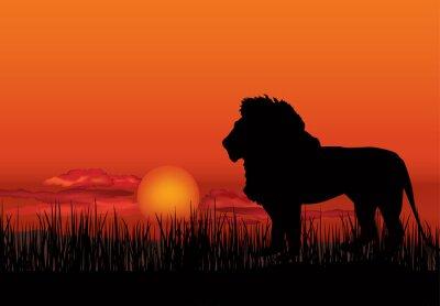 Obraz Afrykański krajobraz z lwa zwierząt sylwetki. Savanna tle zachodu słońca