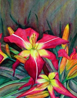Obraz Akryl ilustracje jasnych kwiatów. Kwiaty dzień lilie.