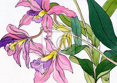 akwarela bukiet bzu-różowe storczyki