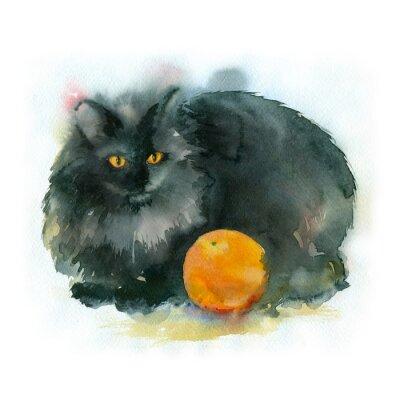 Obraz akwarela. Czarny kot z pomarańczy.