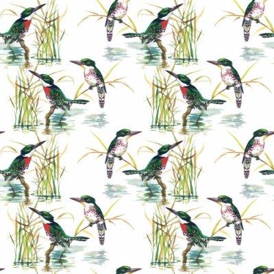 Akwarela Dzikie ptaki egzotyczne na kwiaty bez szwu wzór na