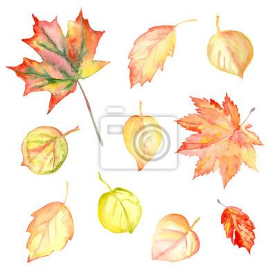 Akwarela jesienią żółte liście