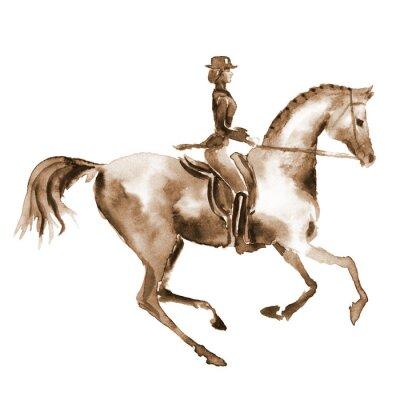 Obraz Akwarela jeźdźca i ujeżdżenia koni na białym tle. Jeździectwo. Ręczne malowanie ilustracji koni tła.