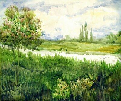 Obraz Akwarela krajobraz. Młody drzewo w łąkowej pobliskiej rzece