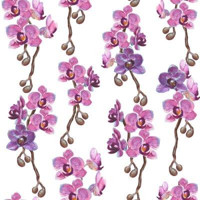 Obraz Akwarela orchidea oddziałów bez szwu deseń na białym tle