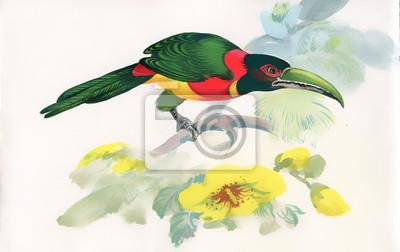 Akwarela ptaka siedzącego na gałęzi