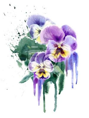 Akwarela purpurowe kwiaty. Trzy fiolety (bratek)