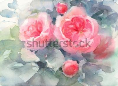 Obraz Akwarela Róż Kwiaty Kwiatowy Tło Tekstura Ręcznie Malowane Ilustracji