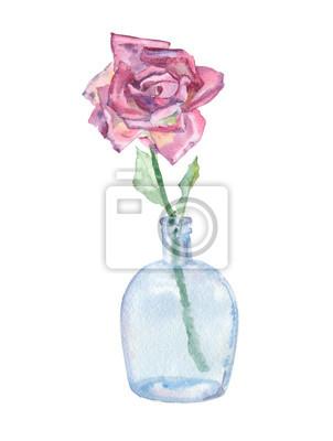 Akwarela różowe w wazonie (bławatek)