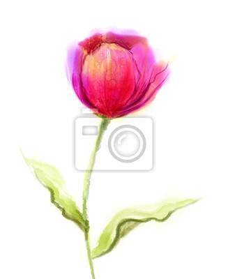 Akwarela różowy, czerwony tulipan kwiat z zielonymi liśćmi na białym tle papieru. Ręcznie malowane martwa natura z jednego kwiatka izolować na białym tle