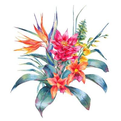Obraz Akwarela vintage kwiatów tropikalnych kartkę z życzeniami