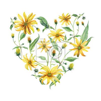 Akwarela wieniec w kształcie serca. Żółte stokrotki z zielonymi liśćmi na białym tle. Może być używany jako zaproszenie lub karty z pozdrowieniami, drukowania reklamę.