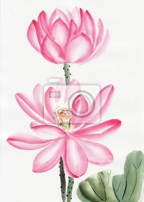 Akwarela z kwiatem lotosu