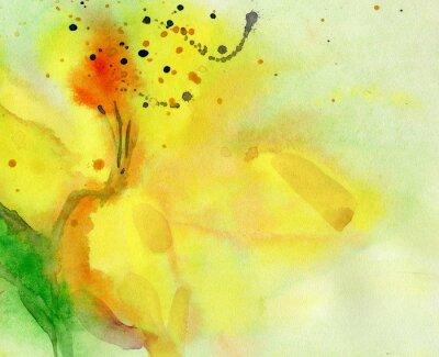 Obraz akwarela z żółtym lily. Malarstwo na papierze.