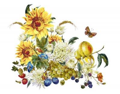 Obraz Akwarela zabytkowe karty z chryzantemy, owoce, słoneczniki