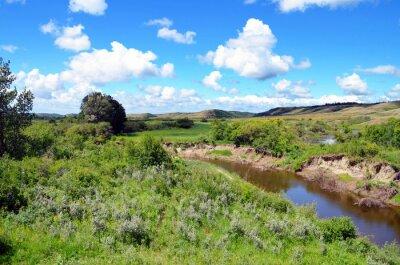 Obraz Alberta, Canada - Countryside with Creek on the way to Wetaskiwin