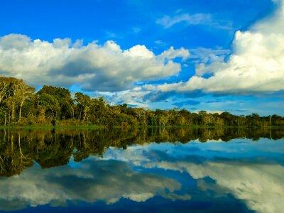 Obraz Amazonka