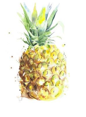 Ananas owoców ręcznie akwarela na białym tle