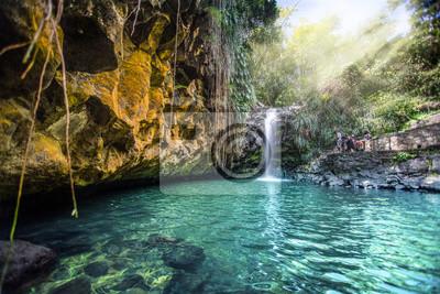 Obraz Annandale Falls Grenada - Waterfall