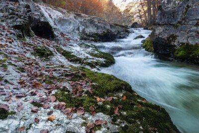 Arazas river in Ordesa and Monte Perdido National Park, Spain
