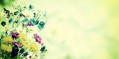 Obraz Archiwalne pocztówka z polnymi kwiatami