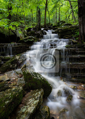 Obraz Arkansas cascade deep in the lush Ozark mountains. Lush green Spring foliage, soft water and the rocky ridge gives a textured contrast to the forest scene deep in the dense wilderness.