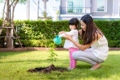 Asian family mother and kid daughter plant sapling tree and watering outdoors in nature spring for reduce global warming growth feature and take care nature earth. People kid girl in garden.