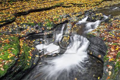 Autumn Color in the Glen - Watkins Glen State Park, New York