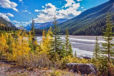 Autumn  in Jasper National Park