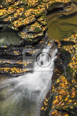 Autumn in the Glen - Watkins Glen State Park, Upstate New York