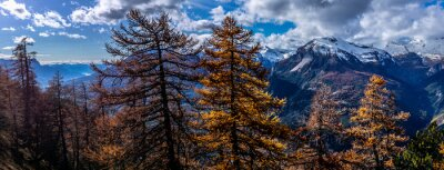 Obraz autumnal colors of the slightly snow-capped mountain, autumn sunrise over the alps