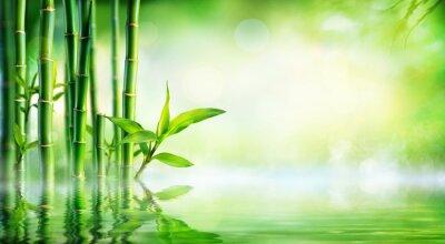 Obraz Bamboo Background - Lush liści z odbicie w wodzie
