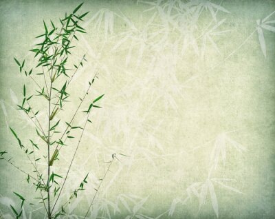 Obraz bamboo on old paper background