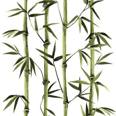 Obraz Bamboo Seamless Vertical Border on white background