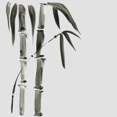 Obraz Bambus w japońskim stylu malowania. Tradycyjna piękna ręka akwarela ilustracja