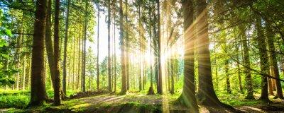 Obraz Bawarski Panorama mit Sonnenstrahlen