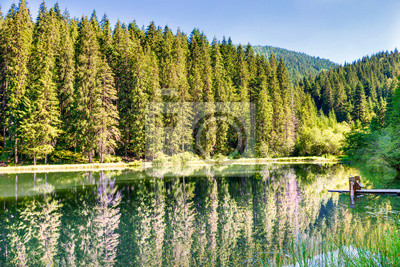 Beautiful forest lake in the mountains with blue water and morning light