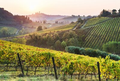 Obraz Beautiful valley in Tuscany, Italy. Vineyards and landscape with San Gimignano town at the background.