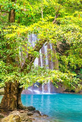 Beautiful waterfall in tropical jungle forest with big green tree on foreground and emerald lake. Nature landscape of Erawan National park, Kanchanaburi, Thailand