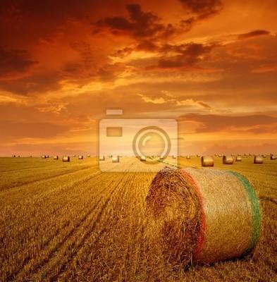 Bele słomy na gruntach rolniczych z czerwonego nieba