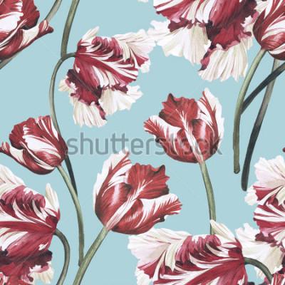 Obraz Bezszwowy kwiecisty wzór z tulipanami, akwarela