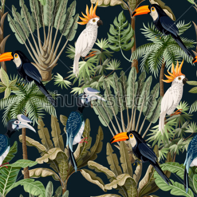 Obraz Bezszwowy wzór z egzotycznymi drzewami i dzikim ptakiem, papugami i tukanami.