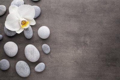 Obraz Biała orchidea i spa kamienie na szarym tle.