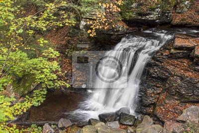 Big Run Falls - hrabstwo Sullivan w Pensylwanii