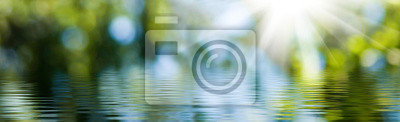 Obraz blurred image of natural background from water and plants