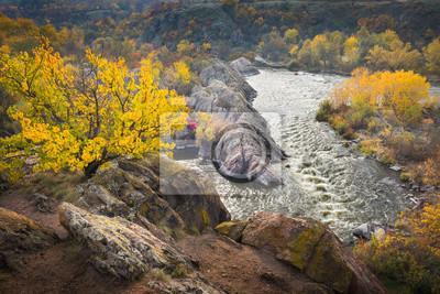 boki rzeki w czasie jesieni z żółtym drzewem