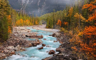 Obraz Boulders and rocks in fresh water stream at rural British Columbia in autumn time