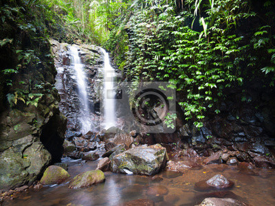 Box Zaloguj Falls w Zielonej Góry, Lamington National Park, Queensland, Australia