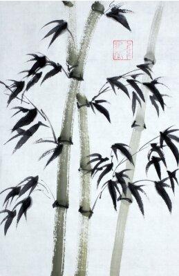 Obraz Bright bambusa drzew